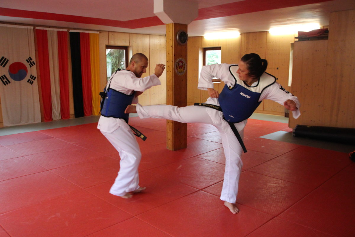 tae kwon do thesis The purpose of the study was to analyze the biomechanics of taekwondo front- leg axe kick one force plates, two synchronized high-speed cameras were used to measure biomechanical parameters in each phase of the front-leg axe-kick the results included: 1 the average reaction time and movement time were 0423.